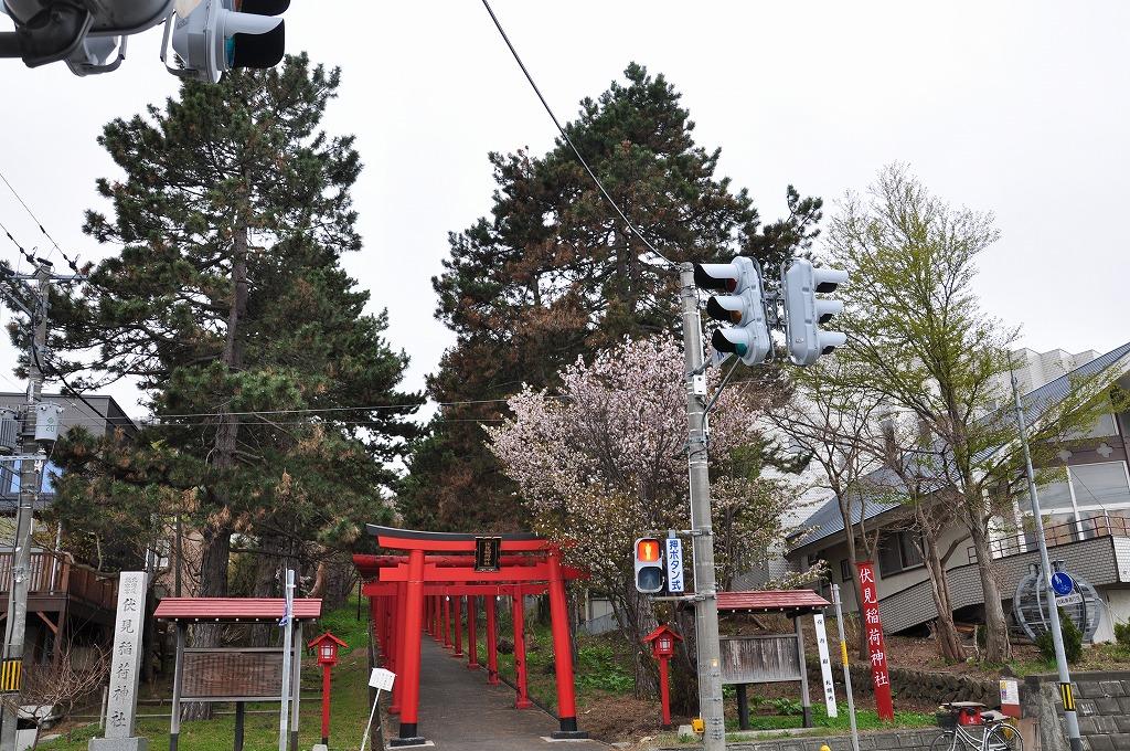 伏見稲荷神社の鳥居と桜